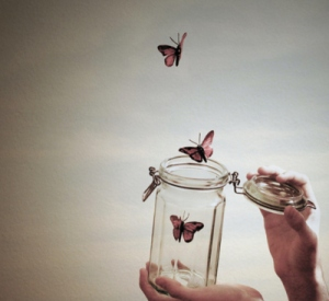 butterflies-cute-jar-junel-nature-Favim.com-142556